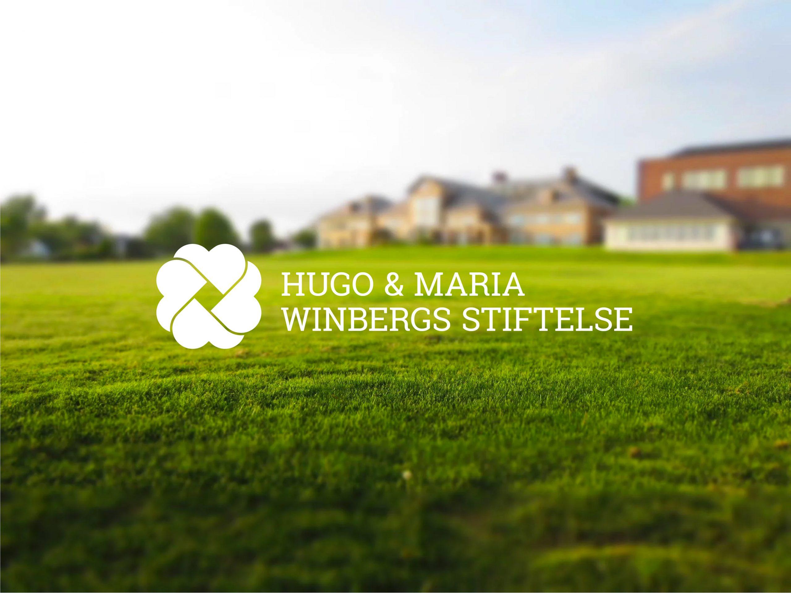 Corporate Identity straubmuellerstudios Stuttgart Vorschau Web