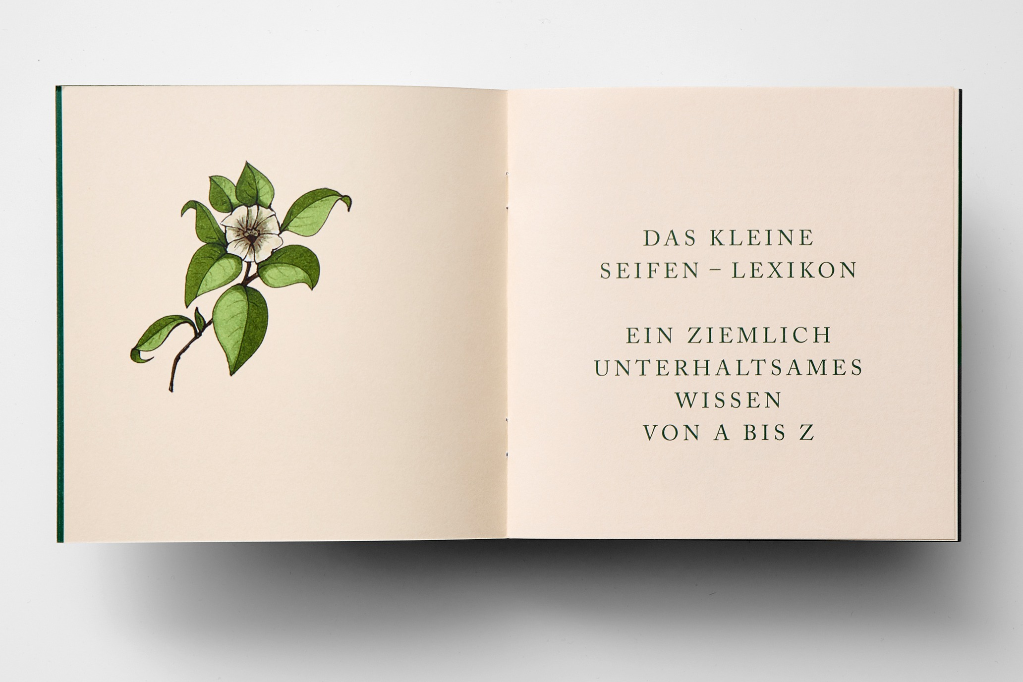 straubmuellerstudios Editorialdesign Stuttgart Pandacare